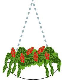 hangingpot.JPG