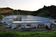 s-fukushimahinannjo01.jpg